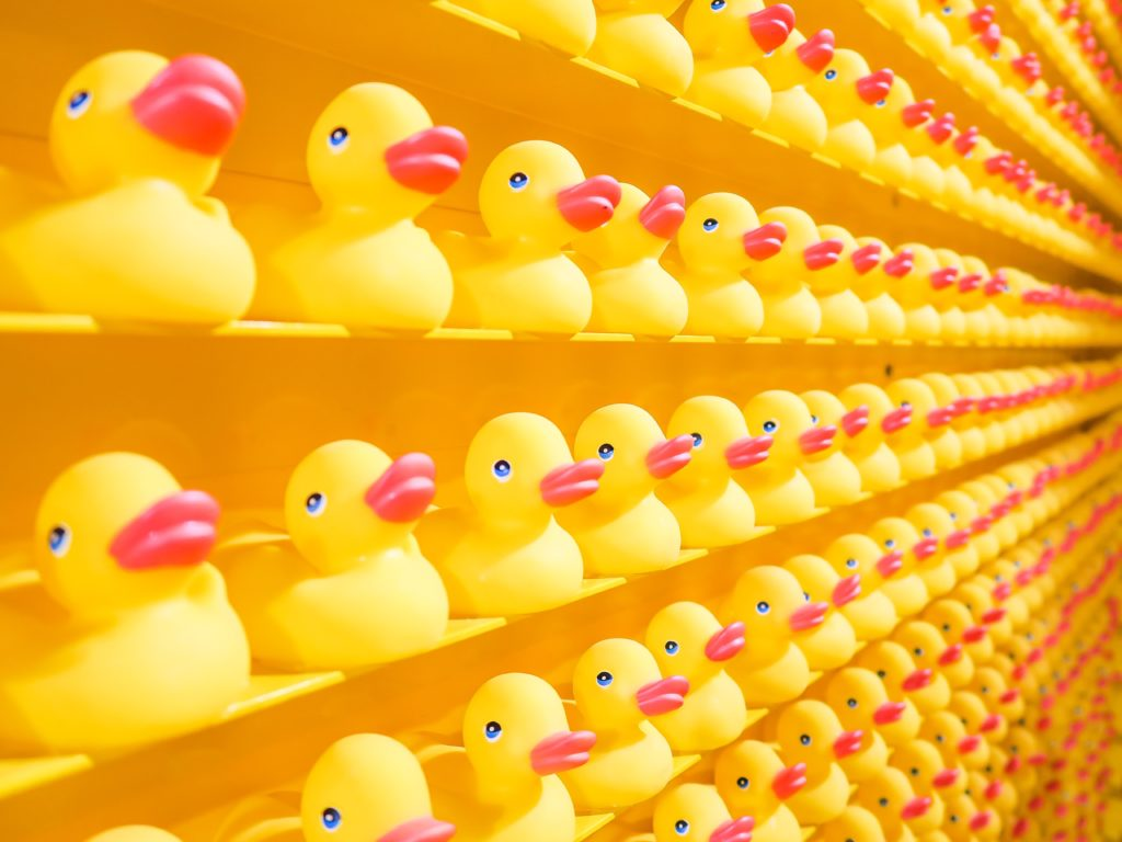 lots of Yellow ducks